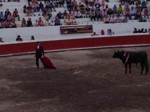 Cuernos1