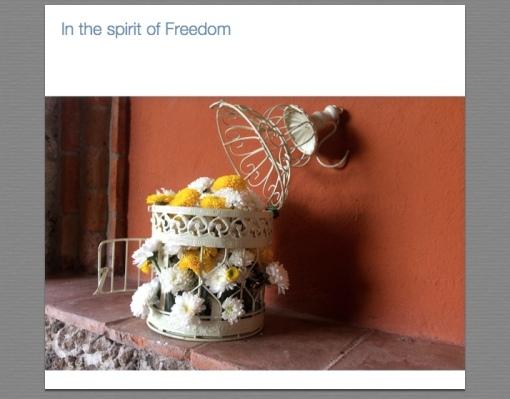 Freedom in San Miguel de Allende